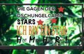 """Dschungelcamp """"Die Gagen der Stars"""""""