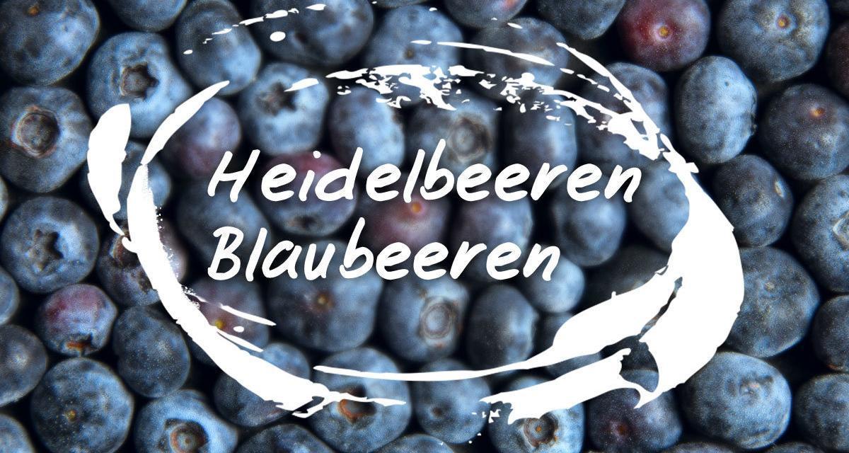 Heidelbeeren / Blaubeeren – Das beste heimische Superfood